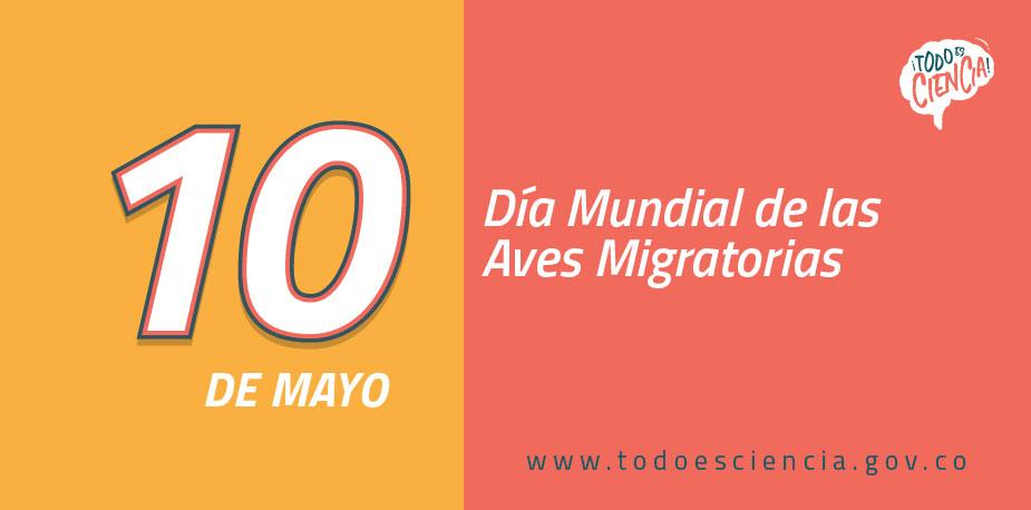10 de mayo: Día Mundial de las Aves Migratorias