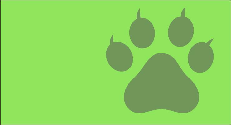 4 de Octubre - Día Mundial de los Animales