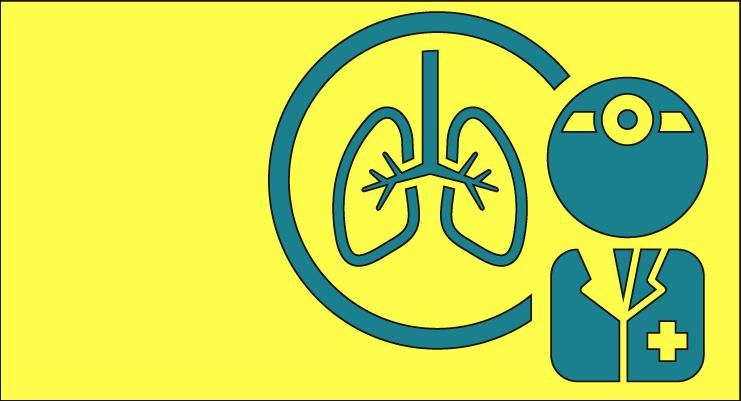 Día mundial de la donación de órganos