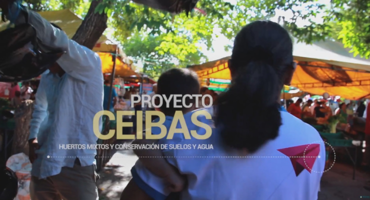Proyecto Ceibas del Huila