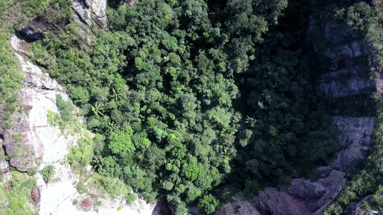 chiribiquete colombia amazonas amazonia orinoquia selva