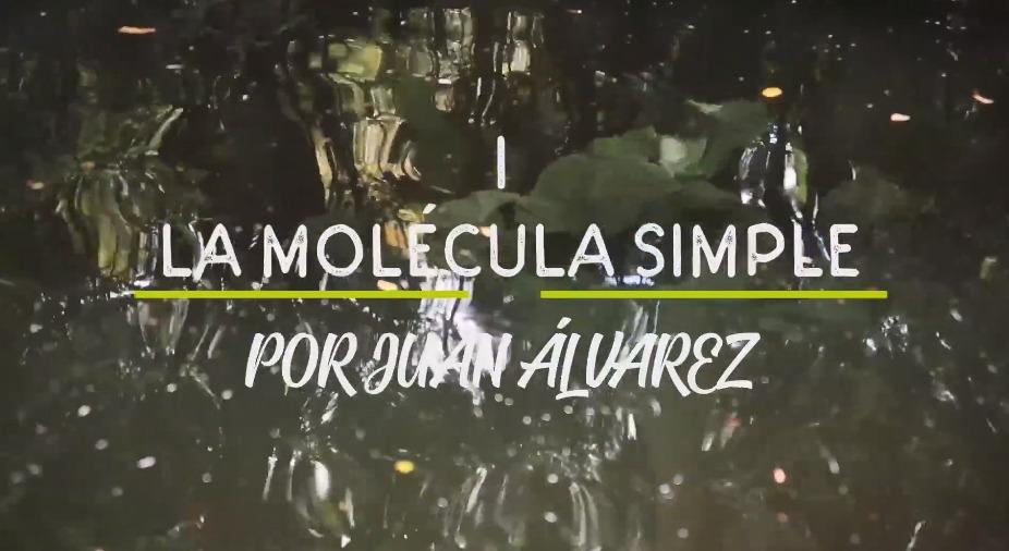 i_la_molecula_simple