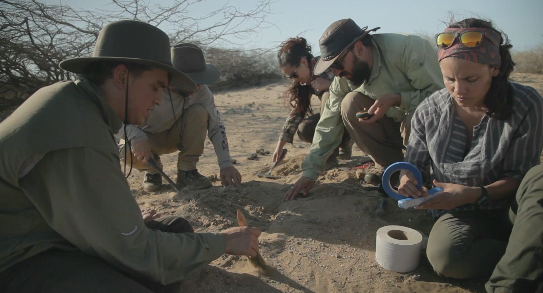 Misión ciencia - Paleontología
