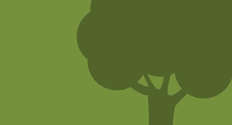 VII Simposio Nacional Forestal