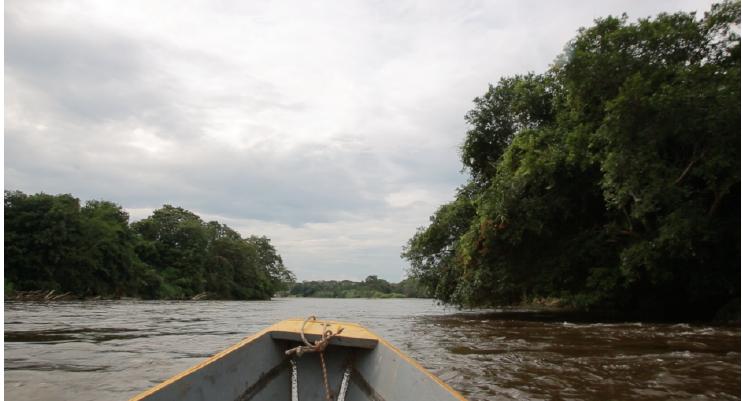 Colombia Bio, expediciones científicas.