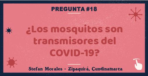 ¿Los mosquitos son transmisores del COVID-19?