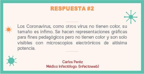 Los coronavirus, como otros virus no tienen color, su tamaño es ínfimo. Se hacen representaciones graficas para fines pedagógicos.