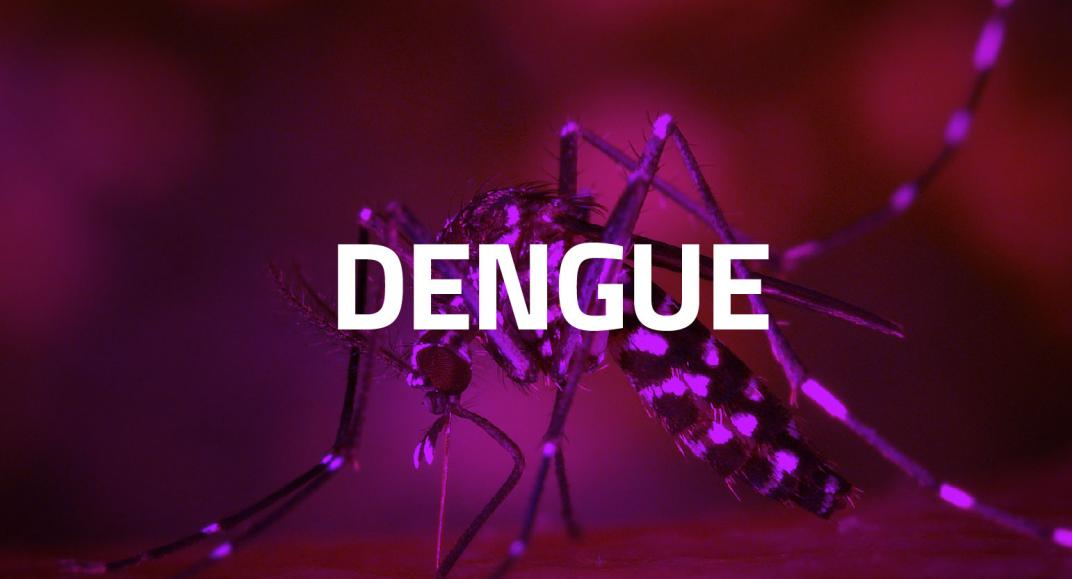 ¿Qué ha pasado con el Dengue?