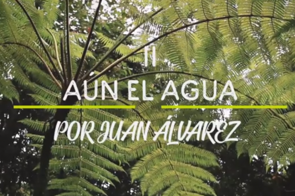 aun_el_agua