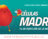Células Madre - Día de la Madre 14 Mayo